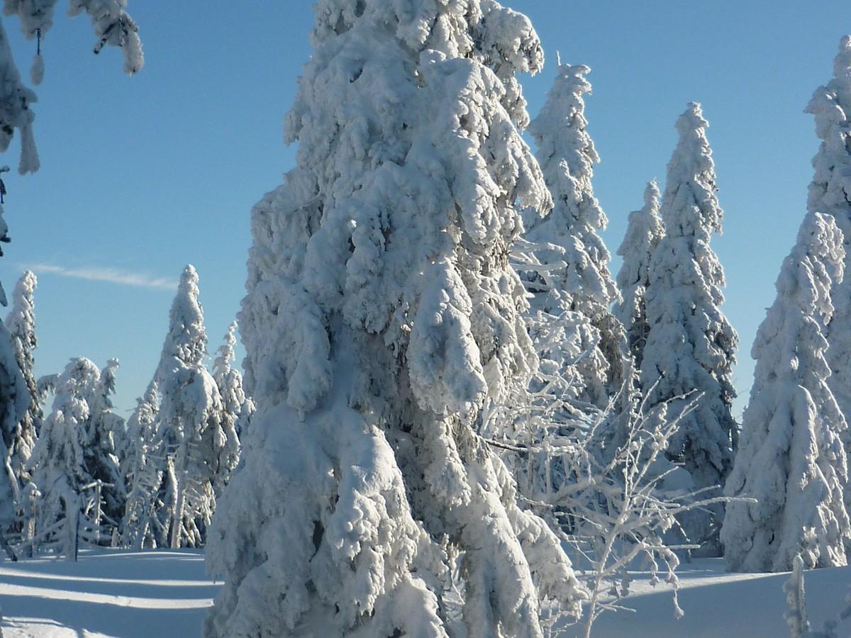 Winterlandschaft am Keilberg