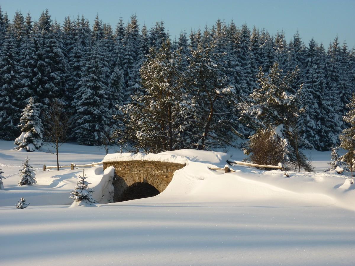Steinerne Brücke im Schwarzwassertal bei Kühnhaide
