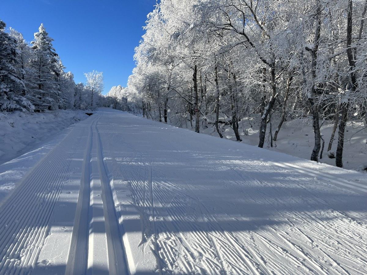 Die Skimagistrale führt in diesem Abschnitt auch öfters über Freiflächen