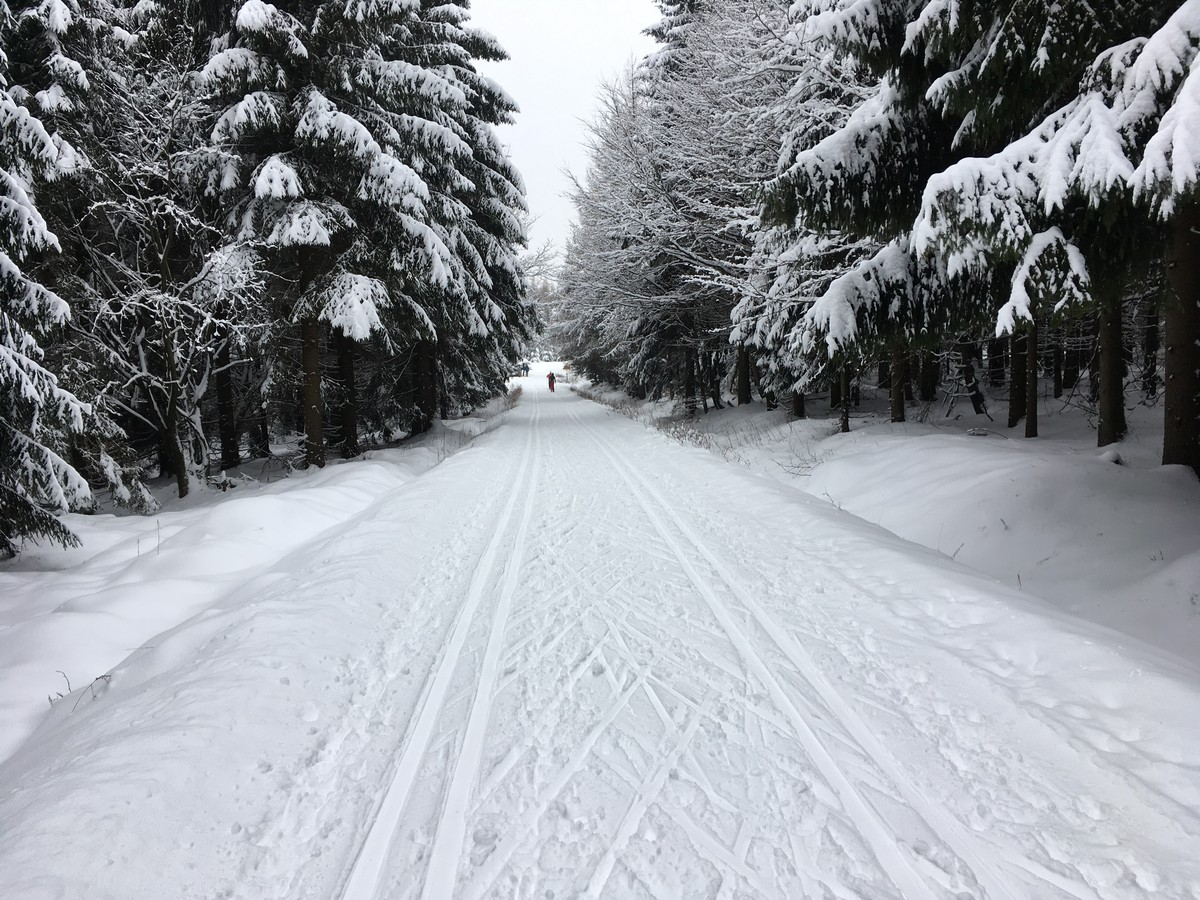 Zwischen Cinovec und Horni Krupka