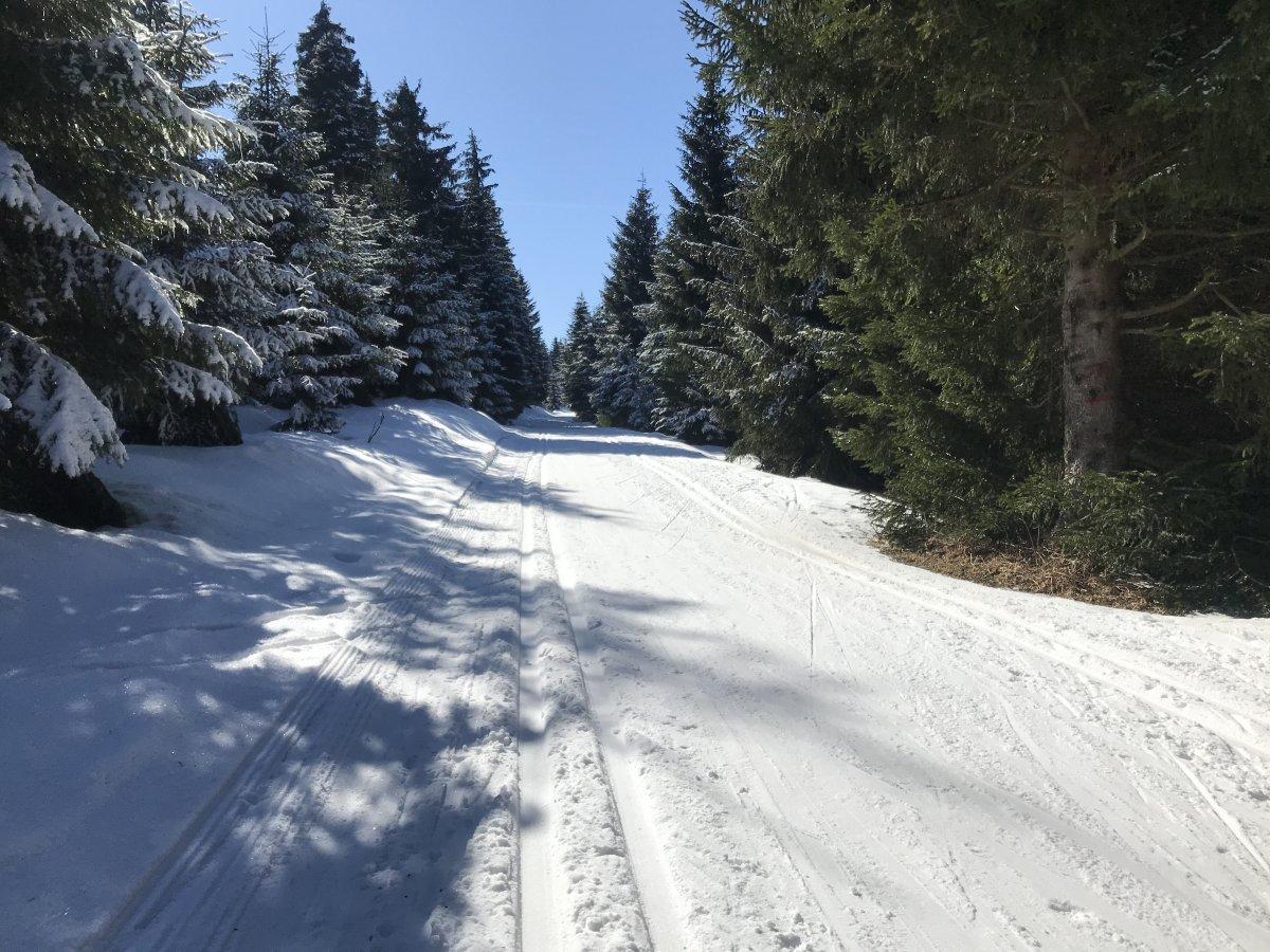 Loipe-zur-Skiarena