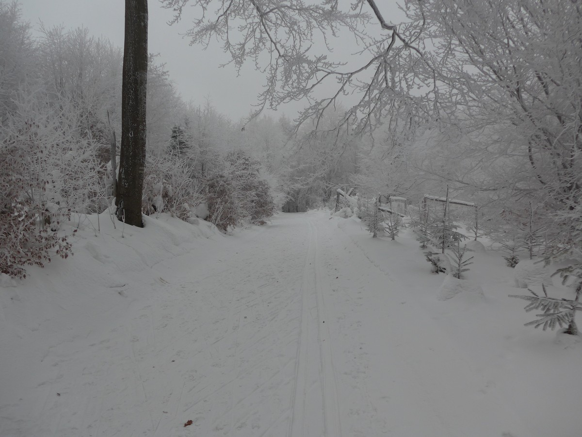 Skiwanderweg Rote Runde (Ruské kolo)