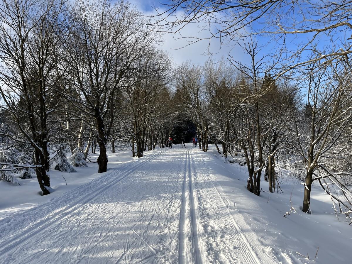 Kahlebergloipe an der Wetterstation bei Zinnwald-Georgenfeld