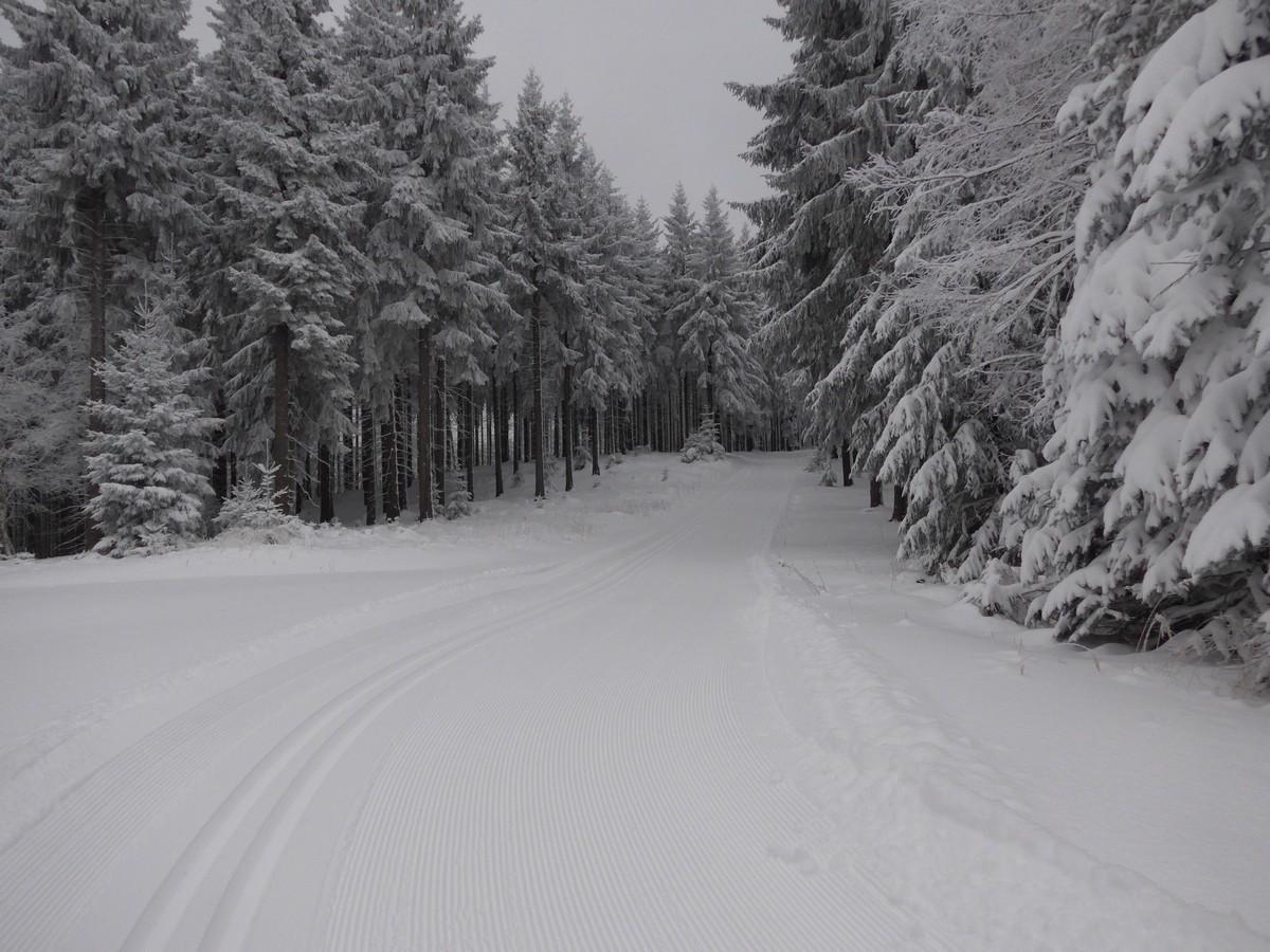 Skiwanderweg Tellkoppe bei Oberbärenburg