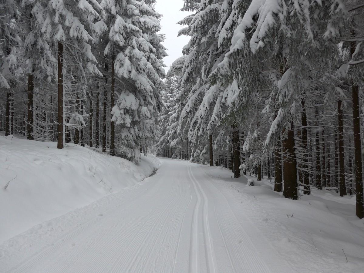 Skiwanderweg von Altenberg nach Obenbärenburg