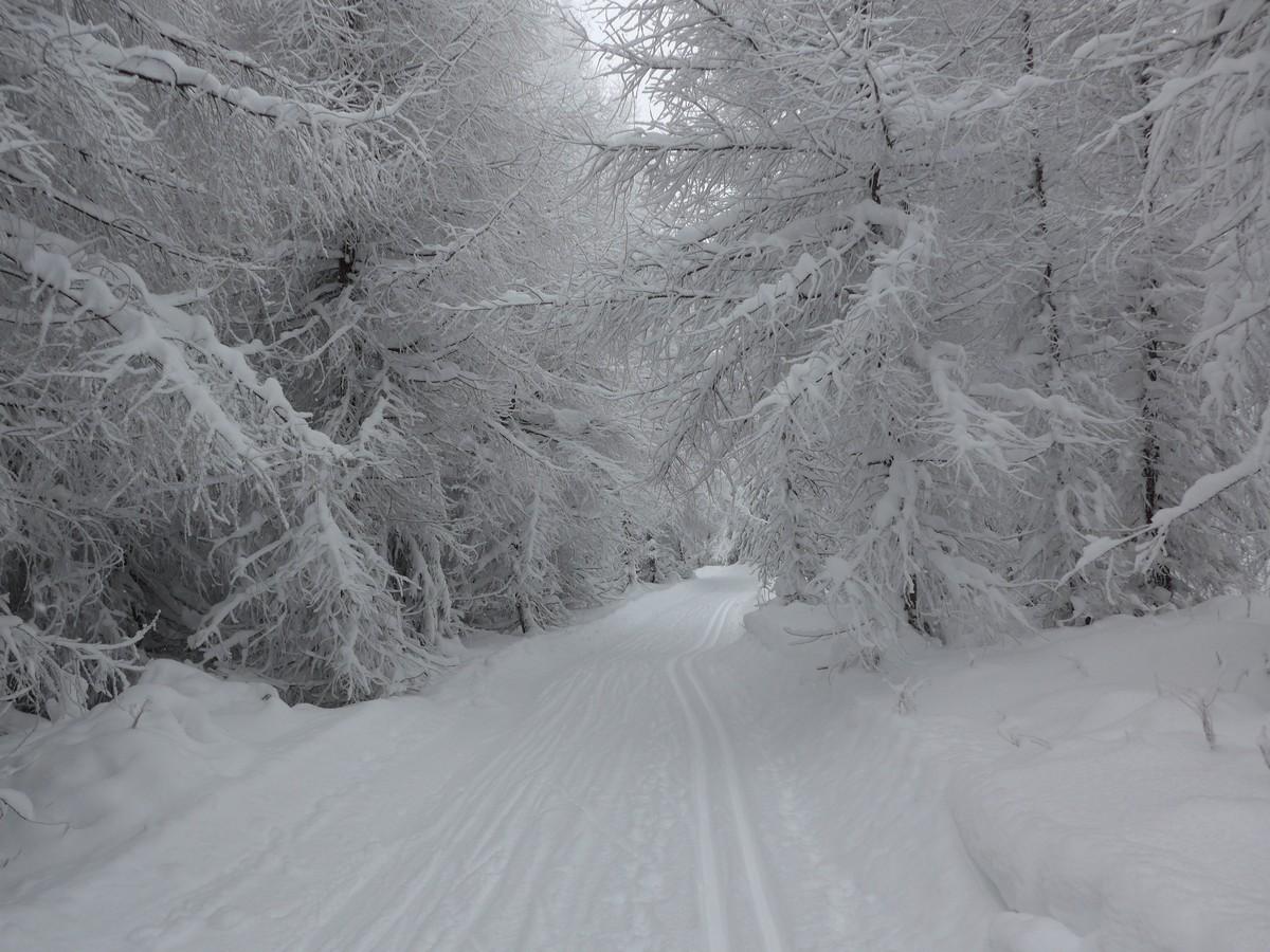 Runde Osterzgebirge