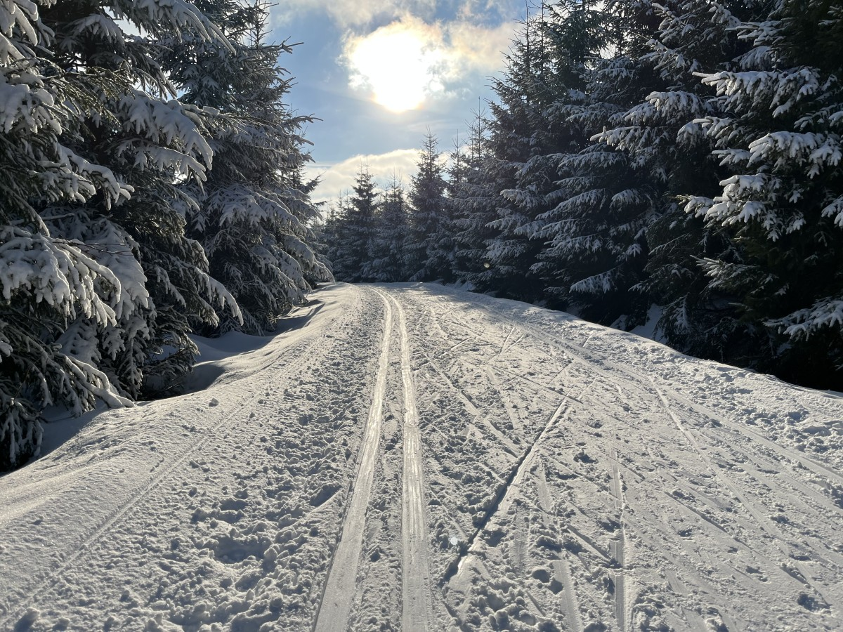 Skimagistrale (SM) nahe Biathlonpark