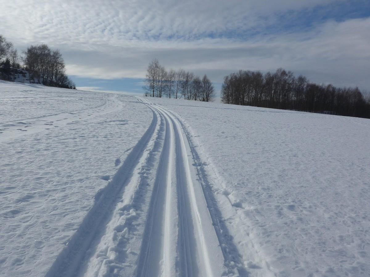 Skiwanderweg bei Frohnau und Buchholz