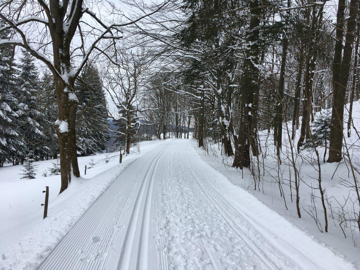 Skiwanderweg rund um den Bärenstein