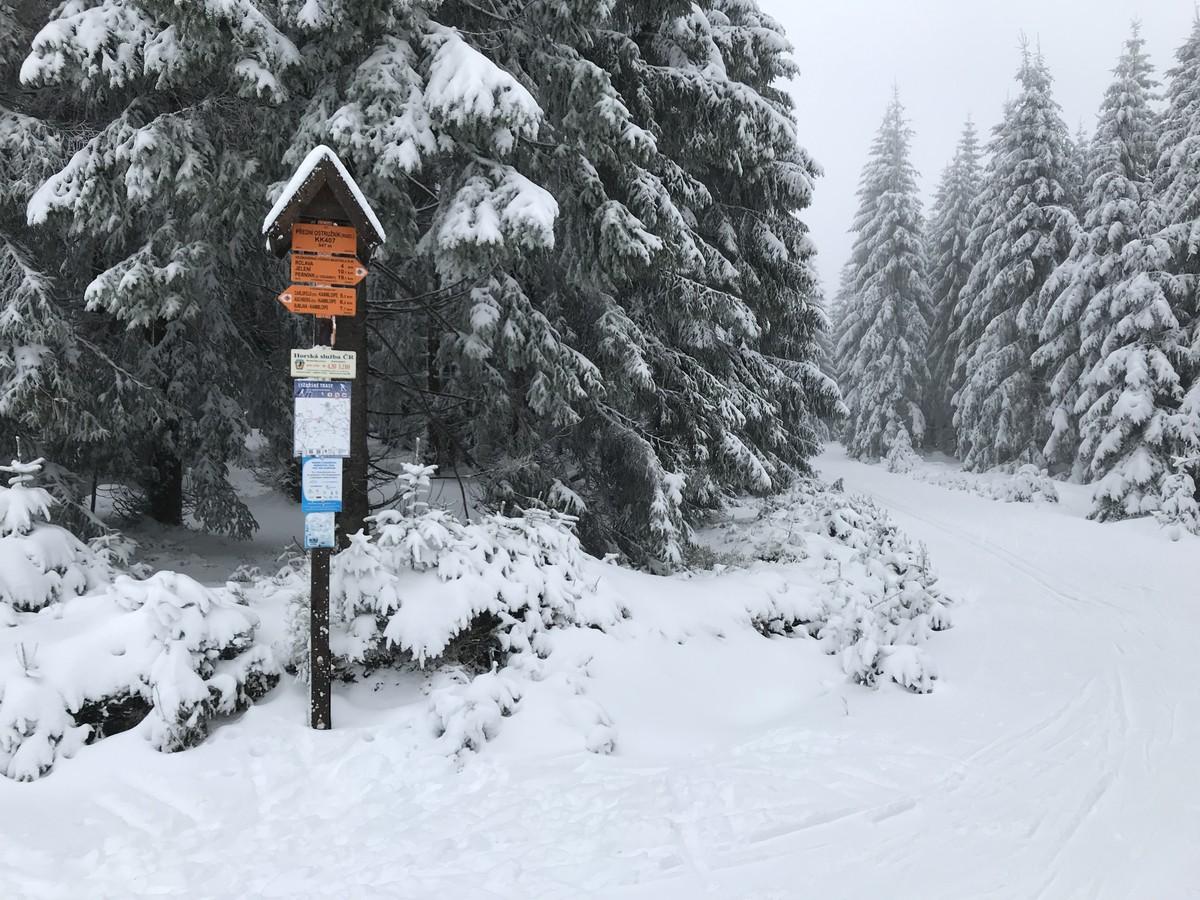 Abzweig Verbindungsloipe Skimagstrale - Kammloipe