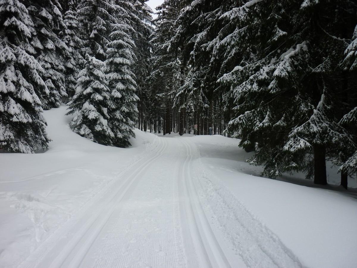 Schneehübelloipe Carlsfeld