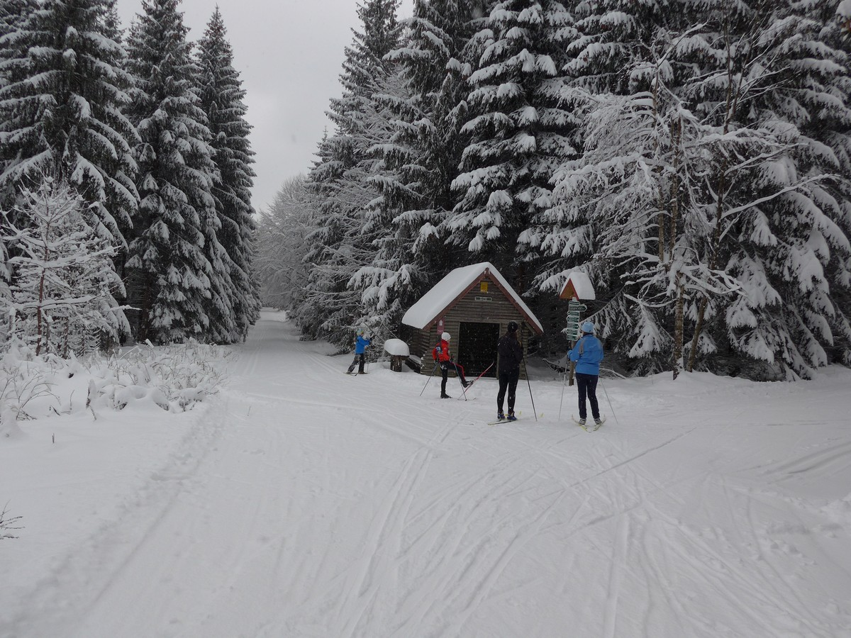 Hoher-Brand-Loipe oberhalb von Erlbach