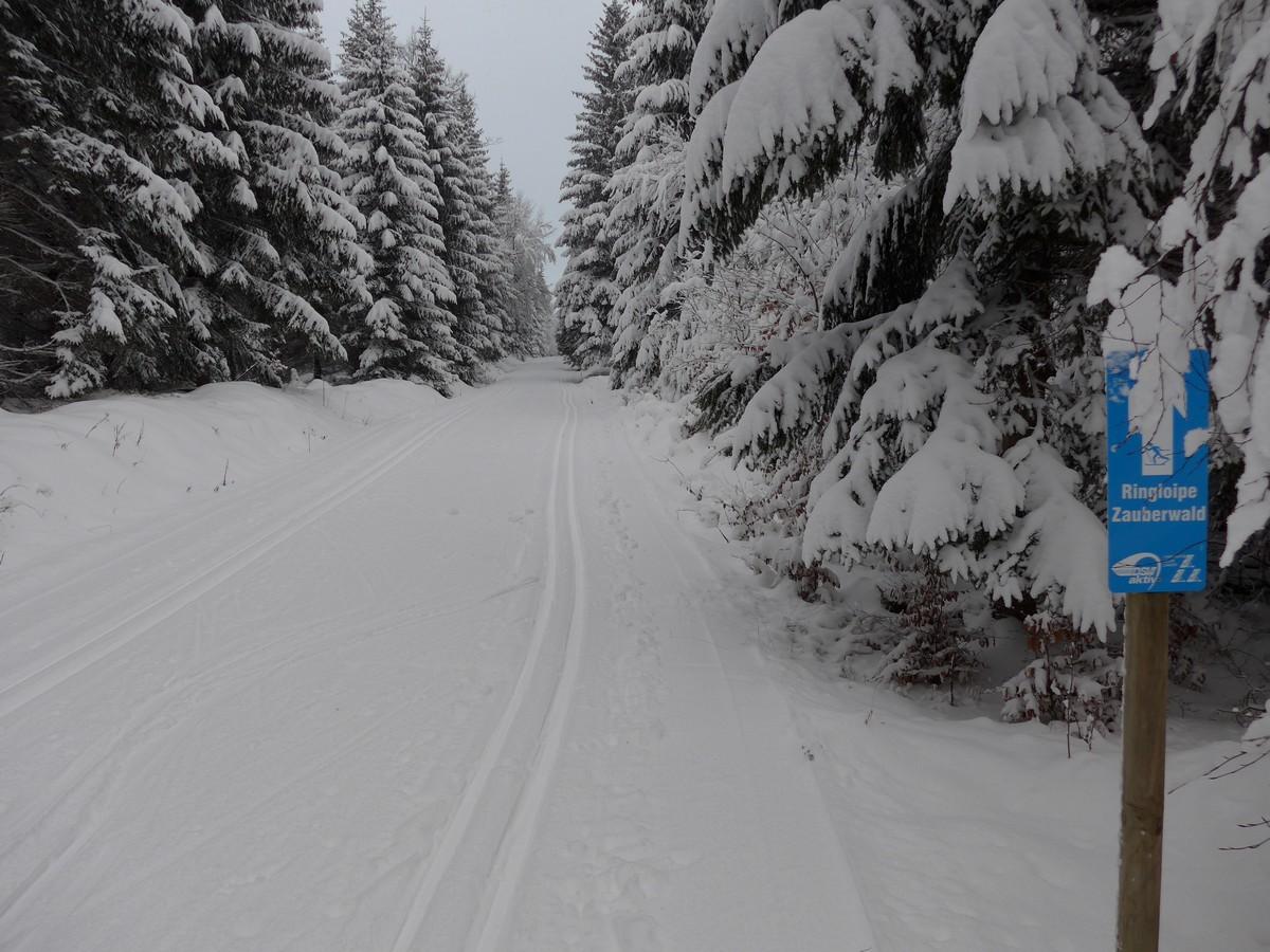 Loipe_Erlbach3 Zauberwald