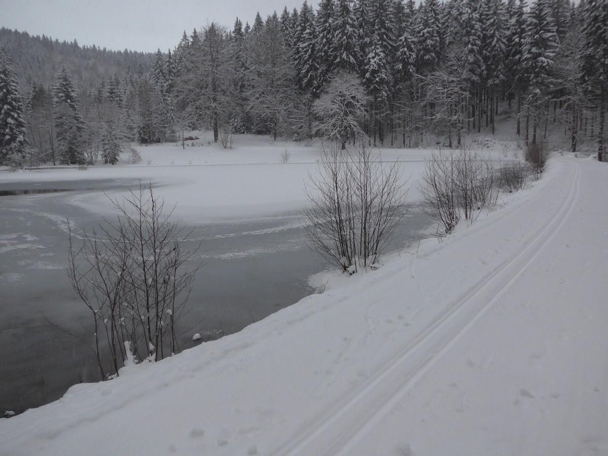 Loipe am hinteren Floßteich nahe Landesgemeinde
