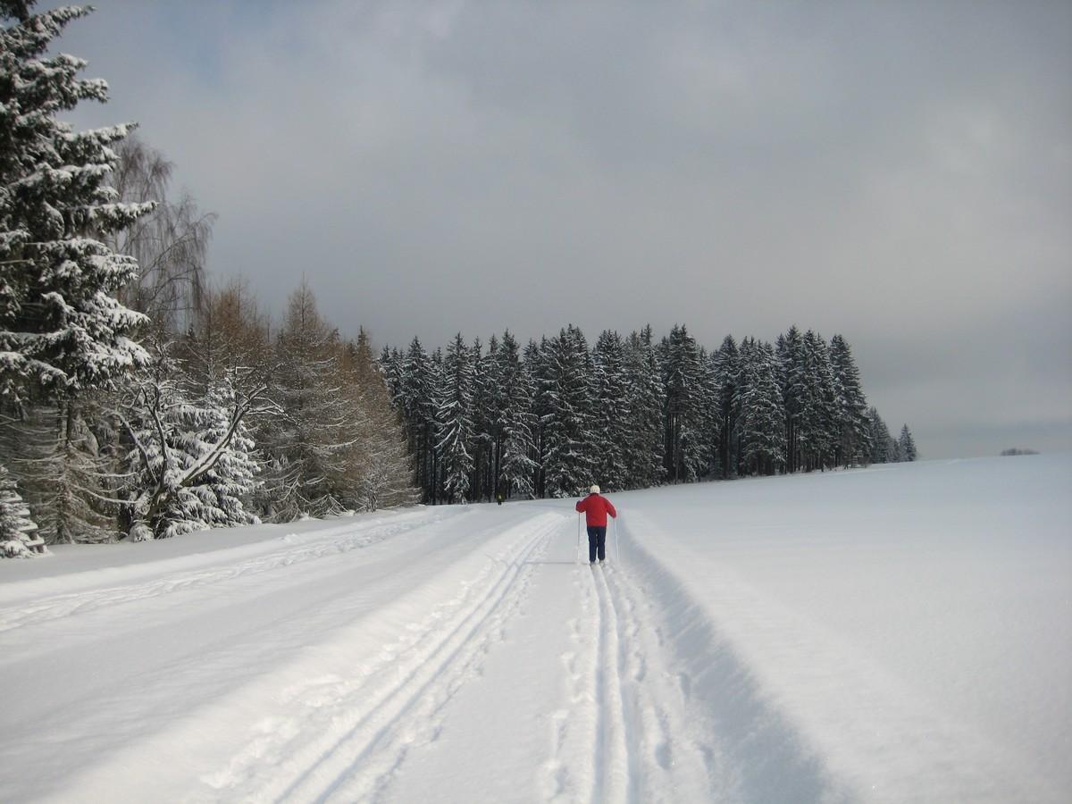 Loipe oberhalb von Geyer Richtung Waldschänke