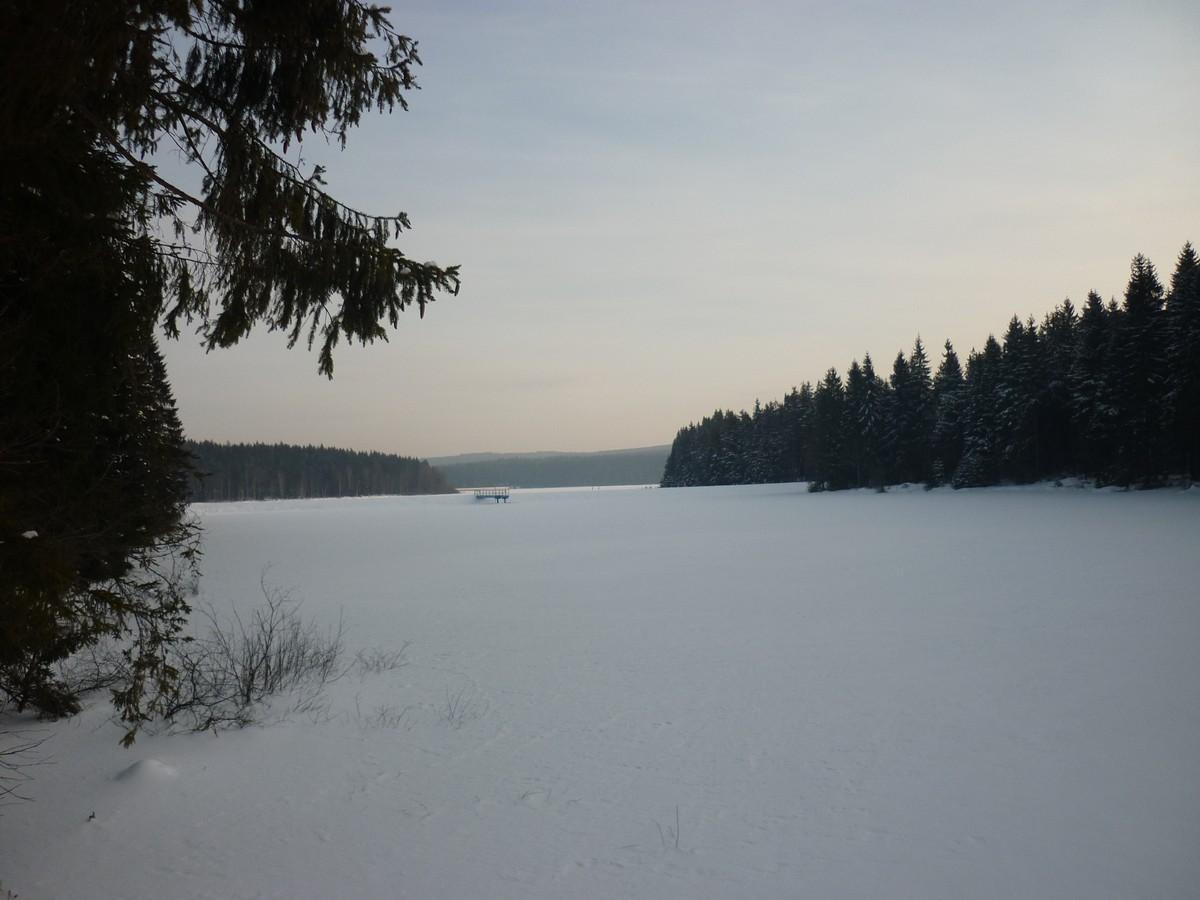 Zwischen Grünbach und Kammloipe an der Talsperre Muldenberg