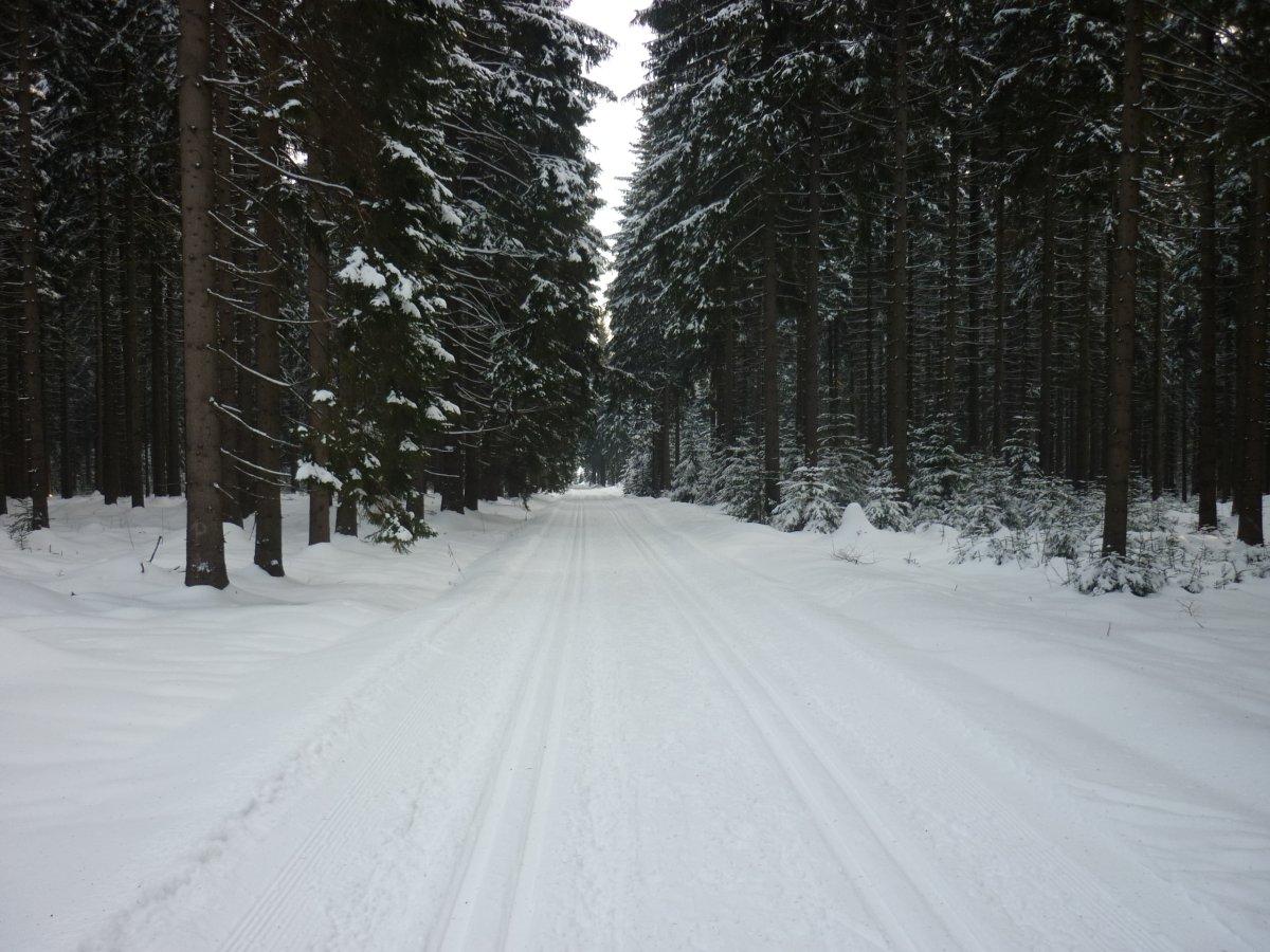 Anschlussloipe Muldenberg zur Kammloipe