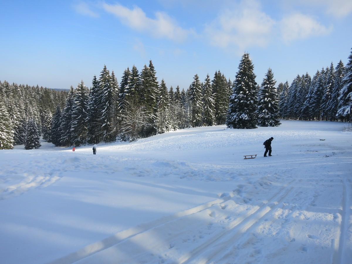 Loipe nahe Rodelhang am Waldpark Grünheide