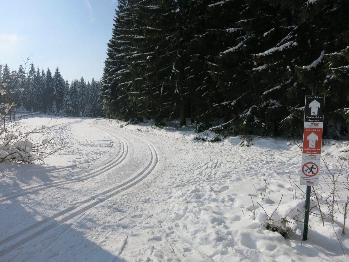 Einstieg Vogtlandseeloipe am Waldpark Grünheide