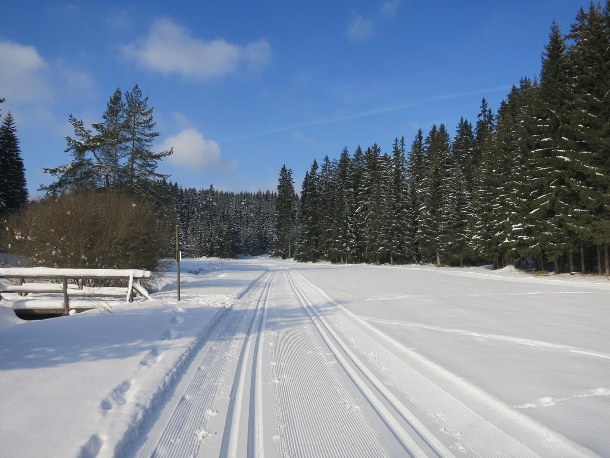 Zinsbachloipe nahe Rautenkranz