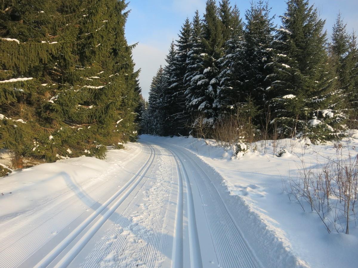 Loipenanschluss zum Waldparkplatz