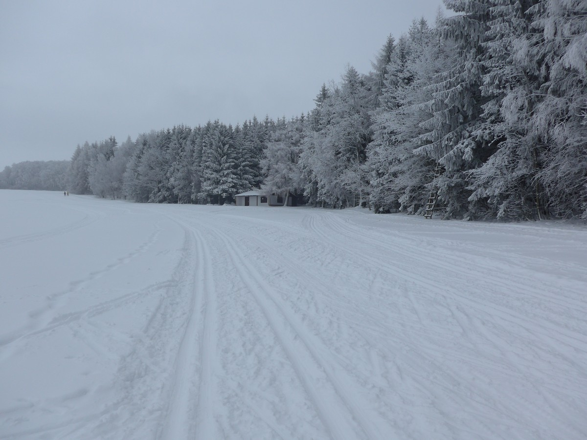 Loipengebiet der Hausdorfer Höhe bei Frankenberg