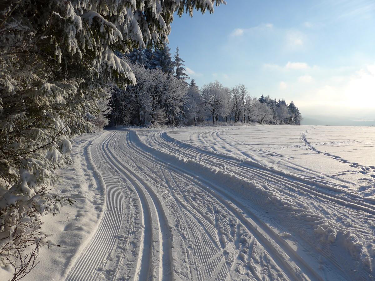 Loipengebiet Holzhau nahe Ringel