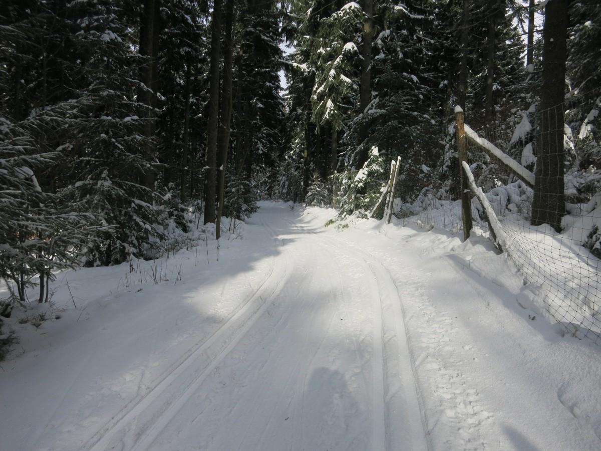 Berghof-Loipe Jöhstadt