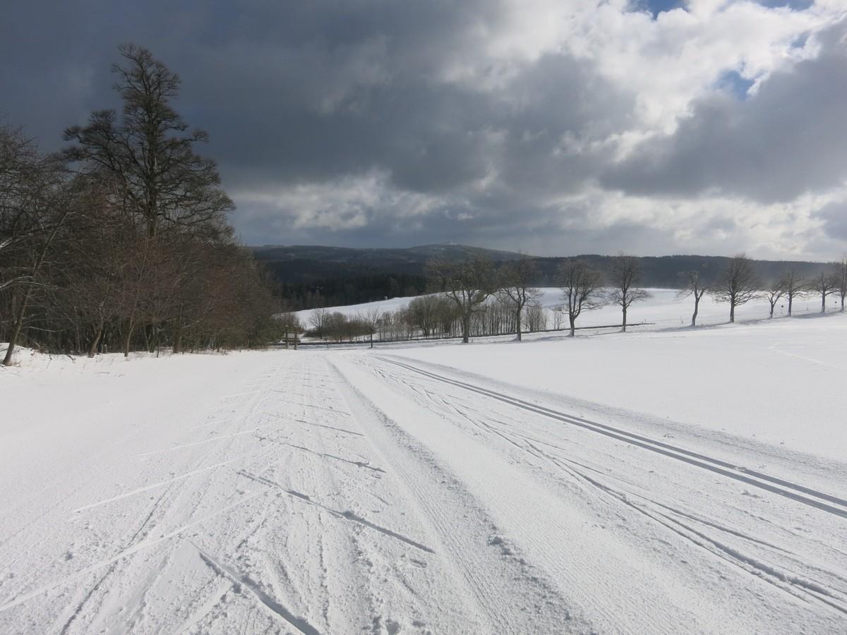Loipe auf dem Feld bei Jöhstadt mit separater Skatingtrasse