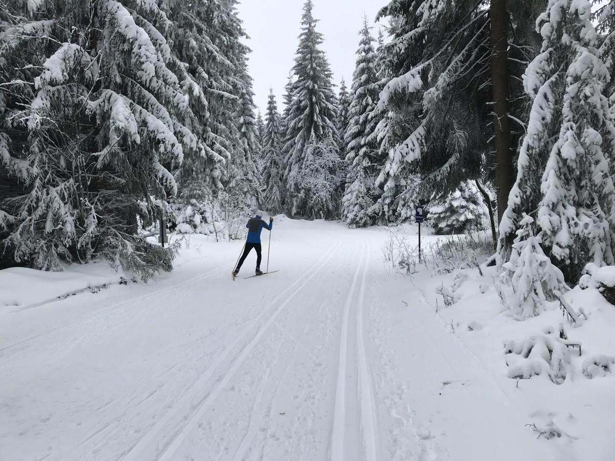 Kammloipe am Abzweig nach Steinbach