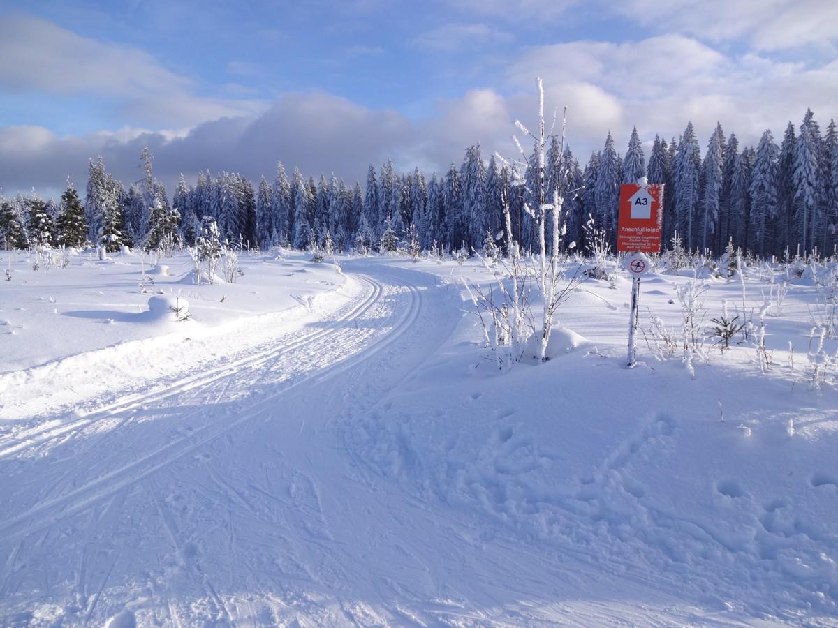 Abzweig Skimagistrale (SM) von der Kammloipe