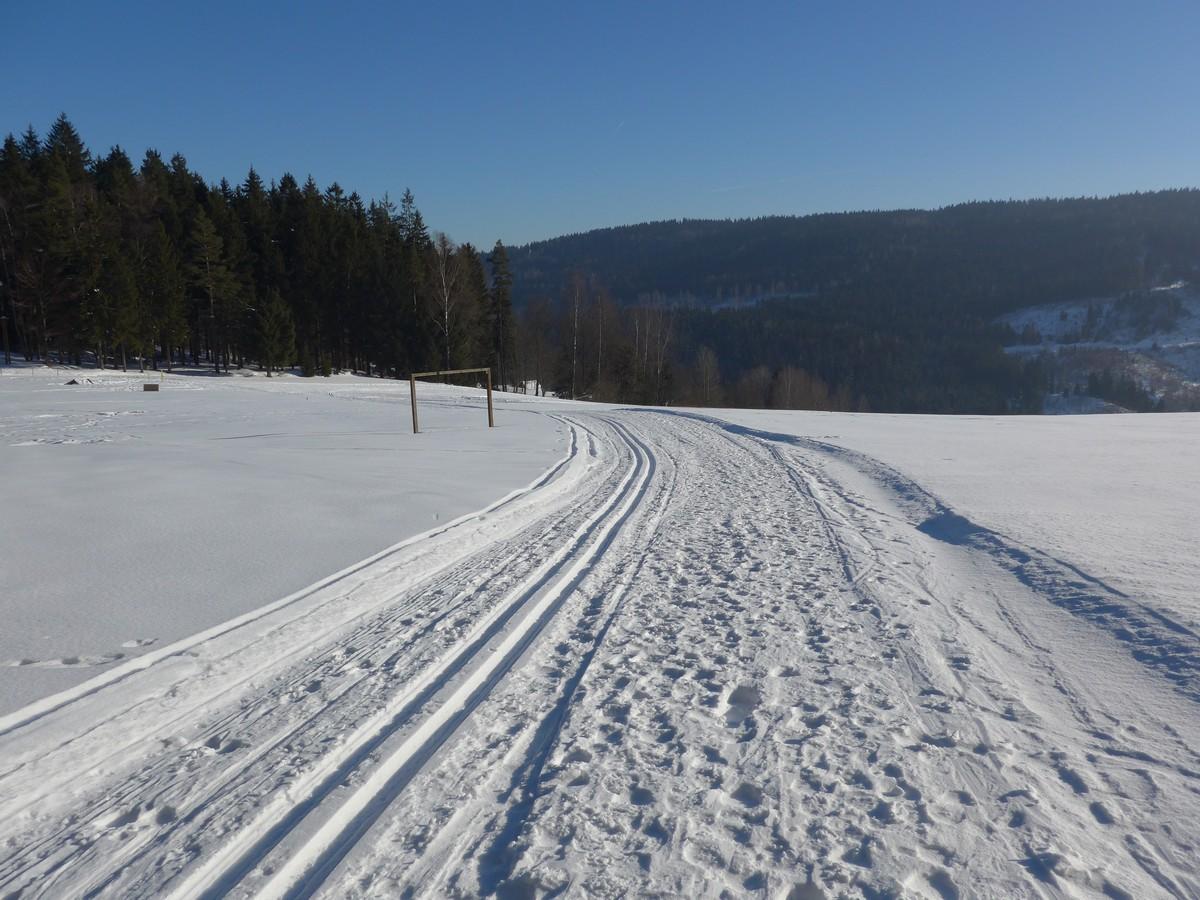 Am Herrenberg oberhalb von Zwota