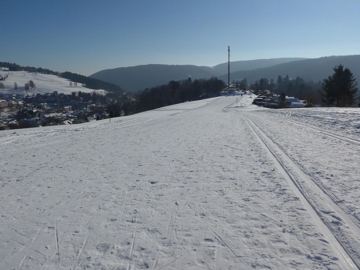 Breite Loipe am Tierpark / Alberthöhe Klingenthal
