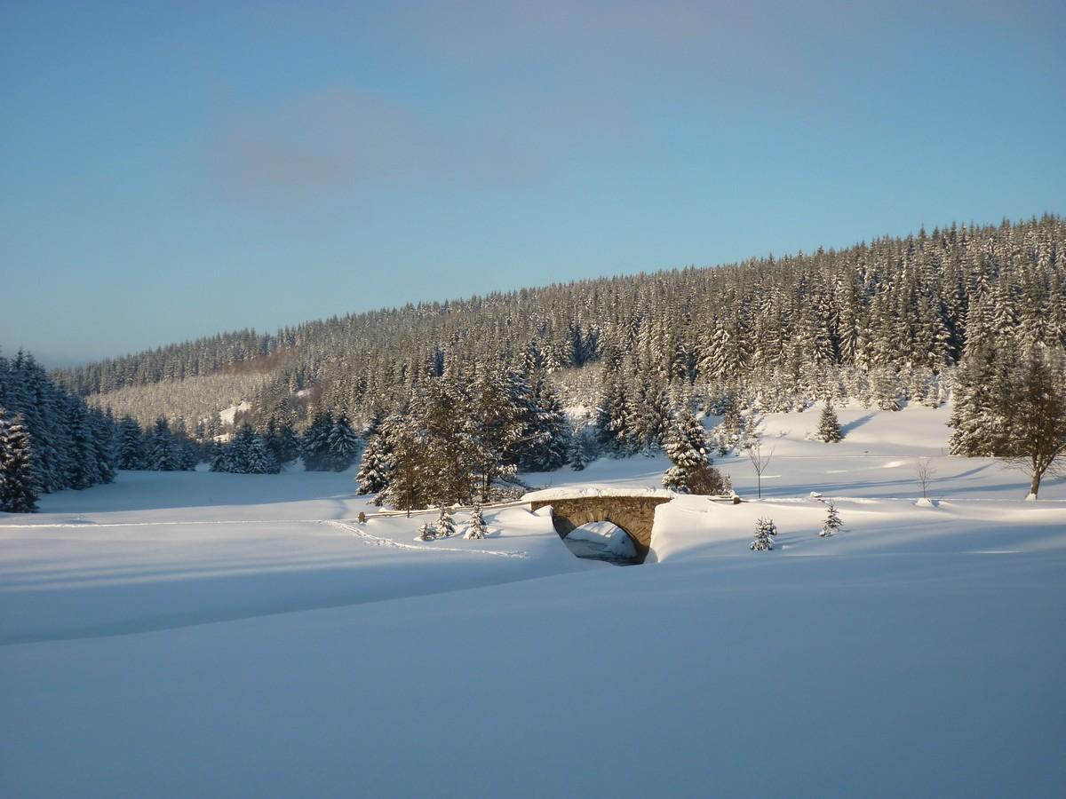 Steinerne Brücke über die Schwarze Pockau - traumhafte Winterlandschaft