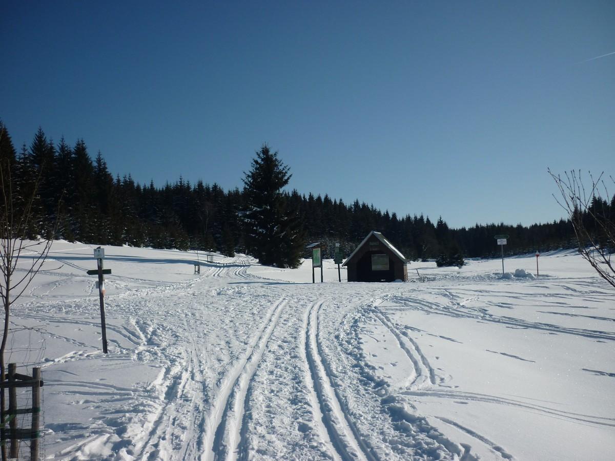 Loipe im Tal der Schwarzen Pockau