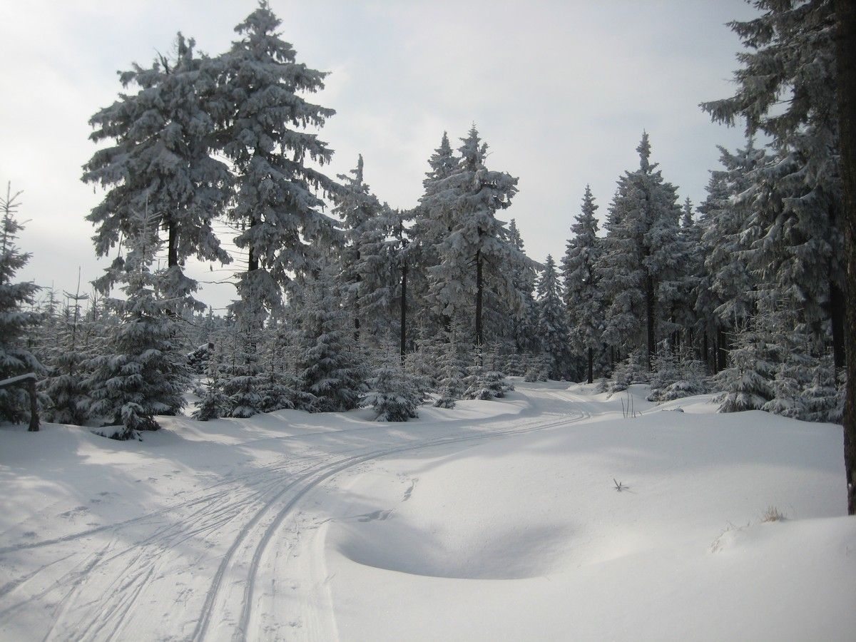 Obere Loipe Loučná östlich des Klinovec