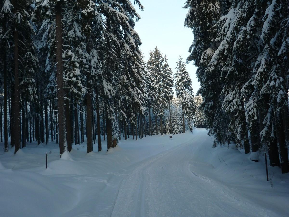 5-km Loipe im Rätzteichgebiet
