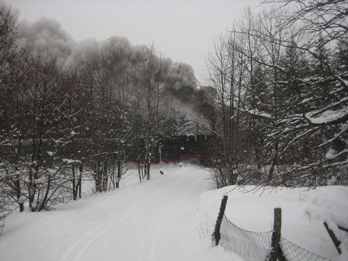 Skiwanderweg bei Kretscham-Rothensehma mit Fichtelbergbahn