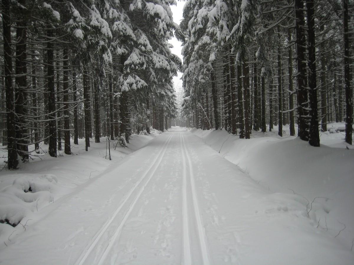 Loipengebiet Neudorf