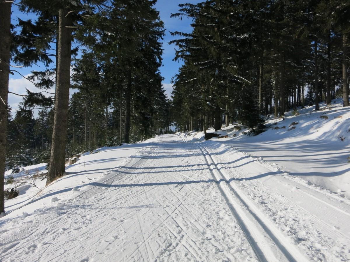 Loipe Oberwiesenthal zur Skiarena