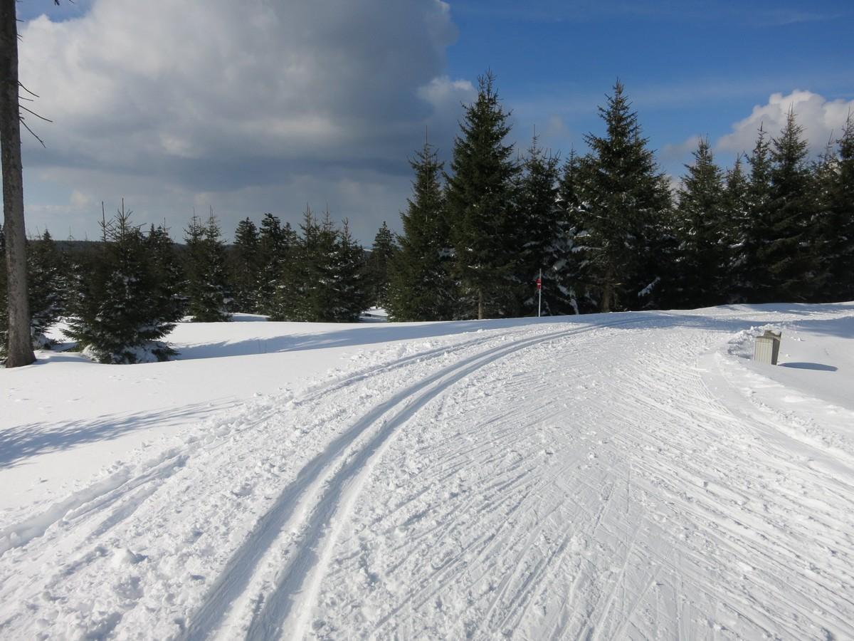 Eliteloipen Oberwiesenthal am Fichtelberg