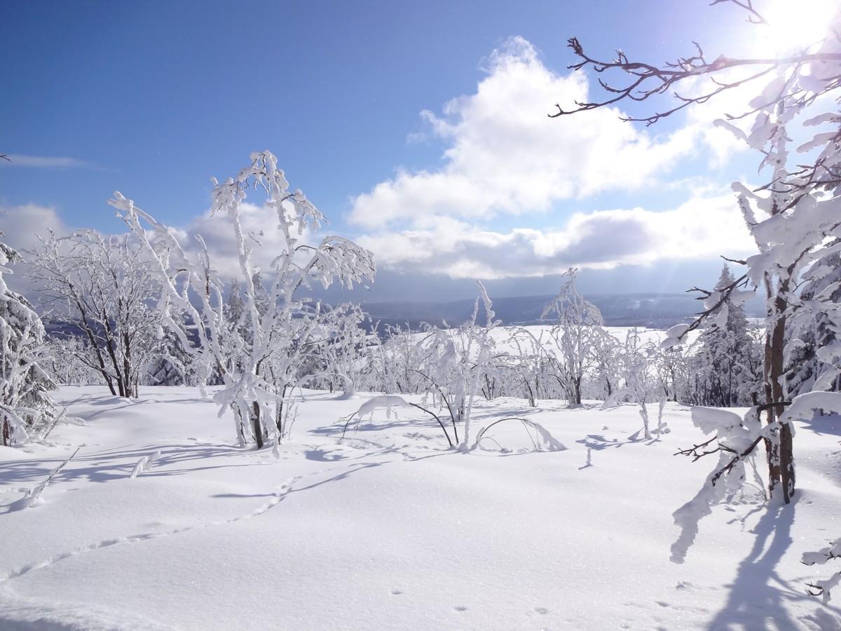 Winterlandschaft oberhalb von Abertamy