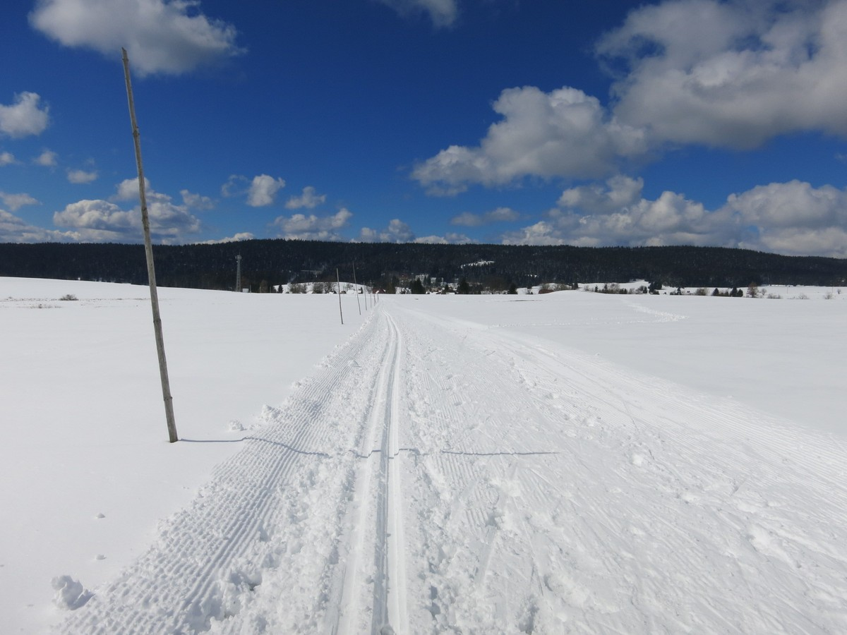 Loipe Pernink – Abertamy auf dem Feld