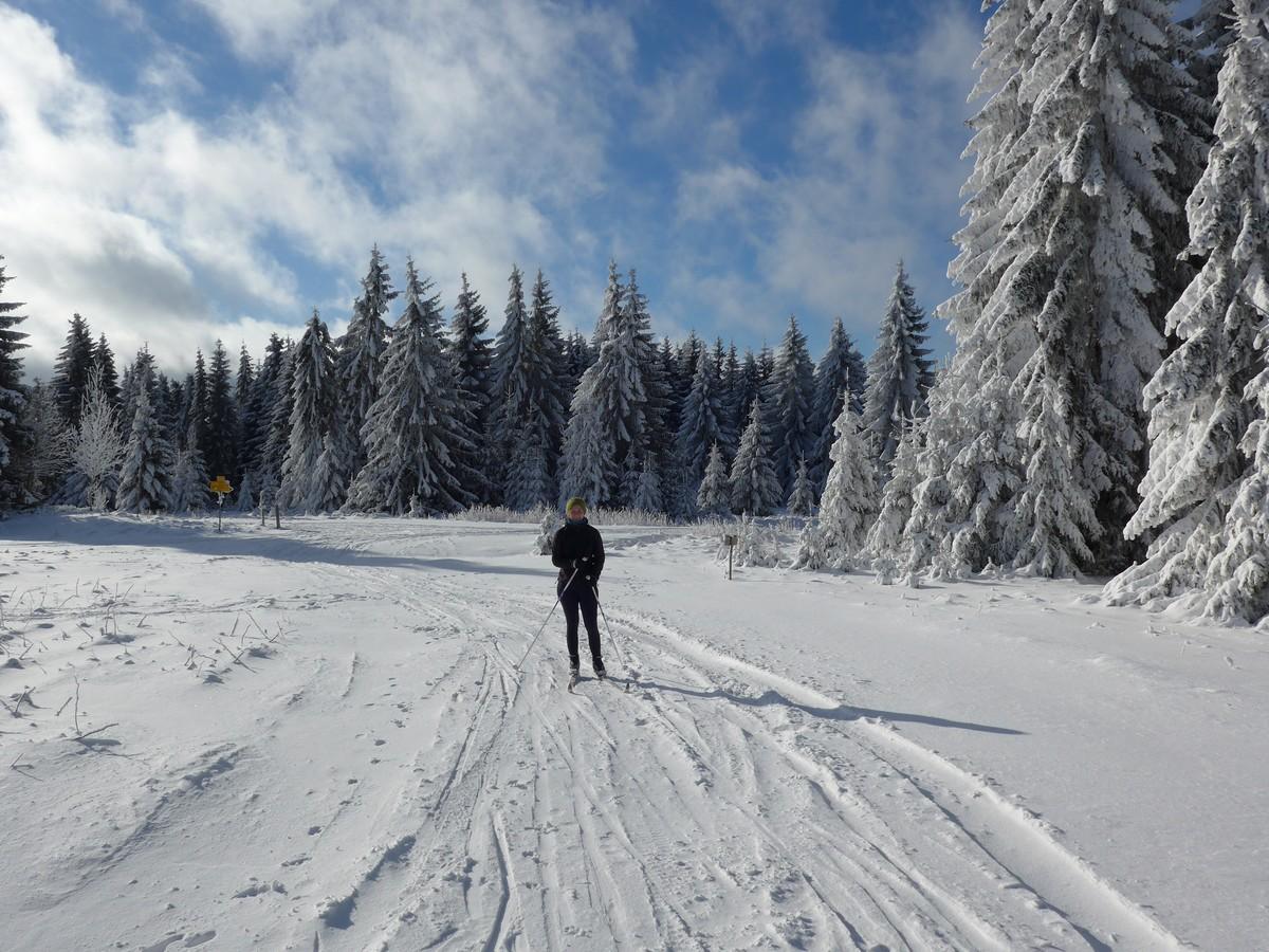 Traumhafte Winterlandschaft bei Pernink / Abertamy