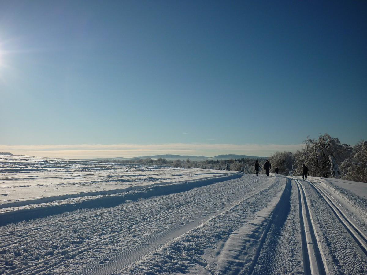 Loipe und Winterwanderweg bei Satzung - Blick zum Fichtelberg und Keilberg