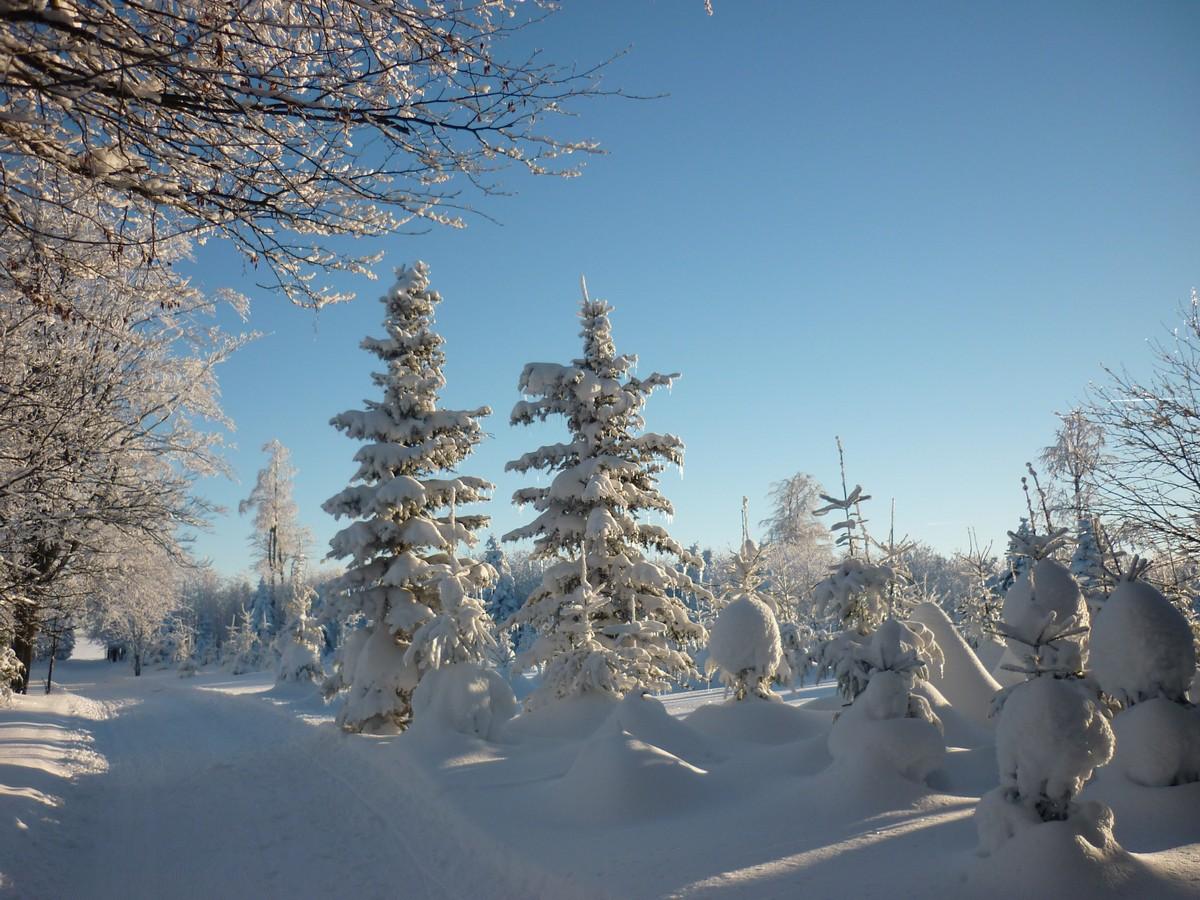 Winterlandschaft bei Satzung