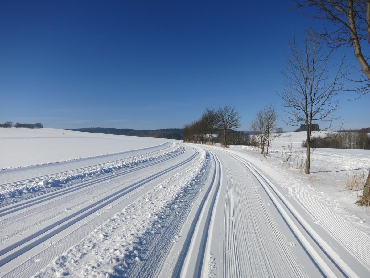 Loipe parallel zur Plattenstrasse Richtung Hermannsdorf