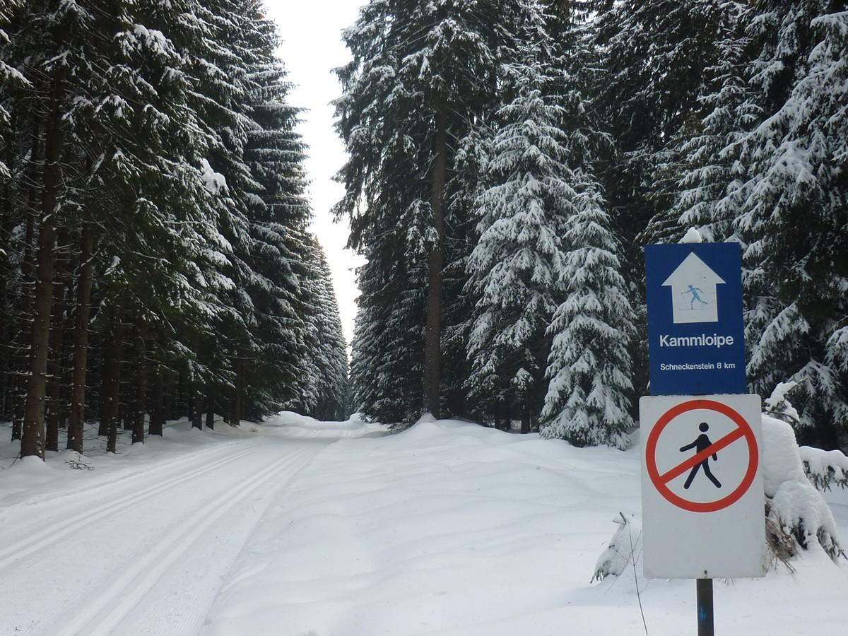 Kammloipe im Bereich Schöneck im Vogtland