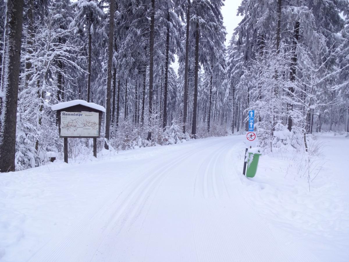 Loipeneinstieg Schöneck nahe IFA Ferienpark