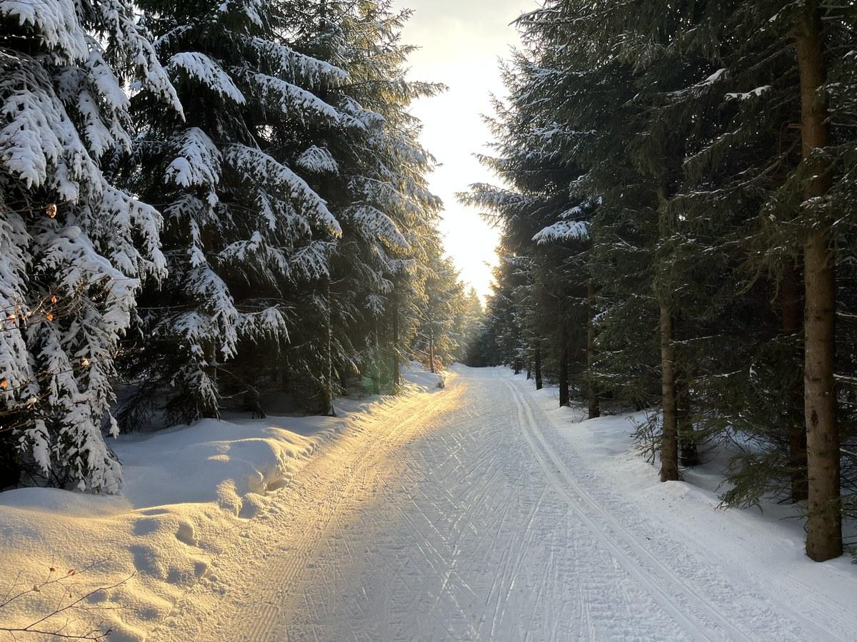 10km Schwartenbergloipe